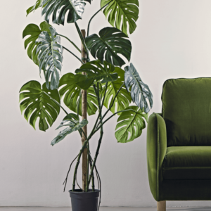 tall faux monstera in pot